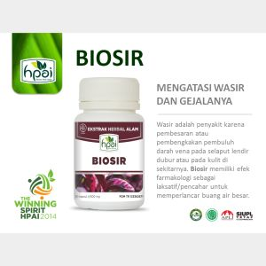 Power Point BIOSIR