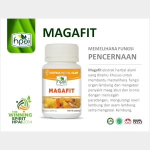 Power Point MAGAFIT
